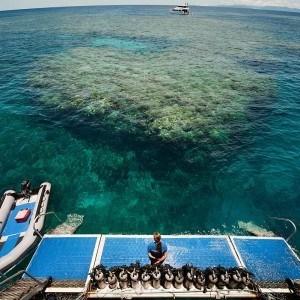 Daintree, Reef and Kuranda